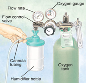 Parts Of An Oxygen Delivery System